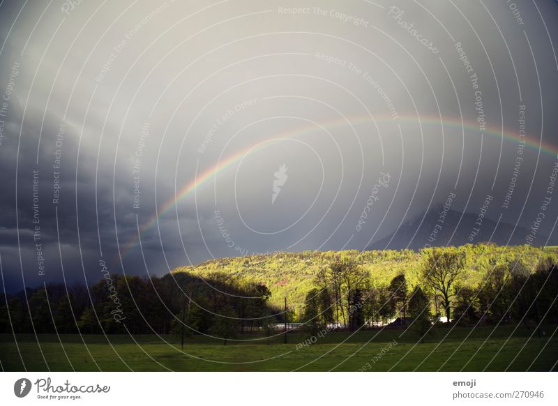 Sky Clouds Forest Environment Field Climate Exceptional Storm Gale Rainbow Visual spectacle Bad weather Force of nature Natural phenomenon Spectacle