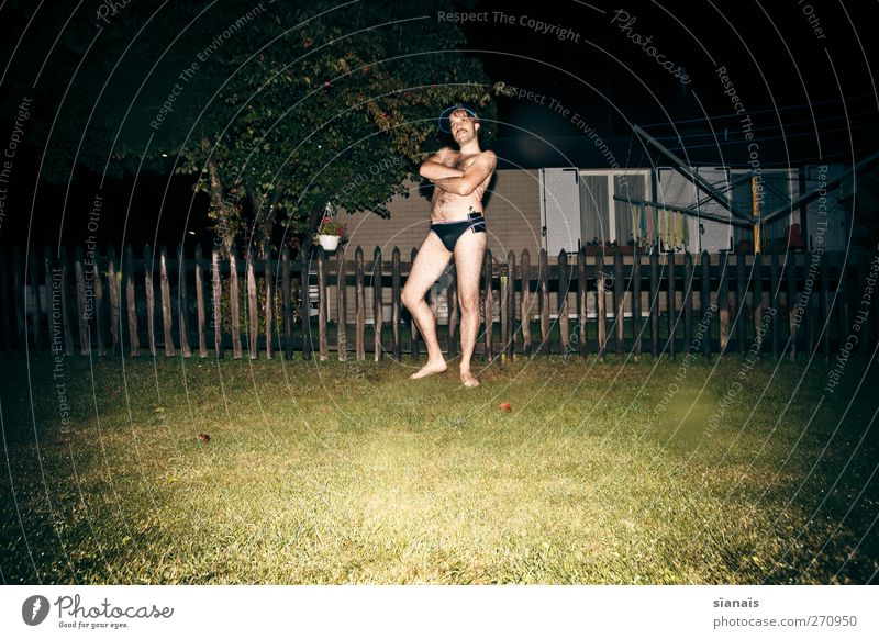 Troglodytes Aedon Joy Beautiful Living or residing Night life Human being Masculine Homosexual Man Adults Life Body Art House (Residential Structure) Garden