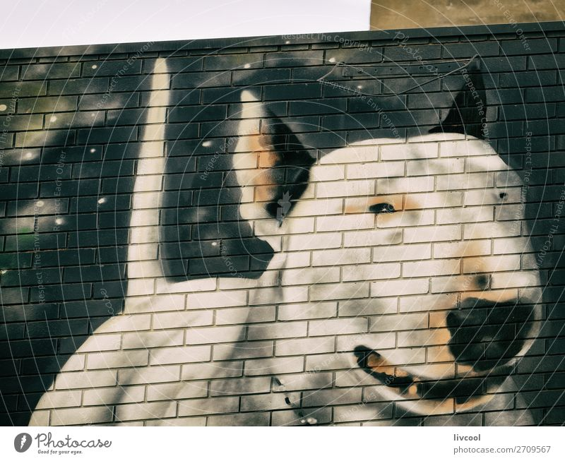 dog graffitti on a wall, fitzroy-melbourne Lifestyle Elegant Style Art Work of art Architecture Culture Animal Street Pet Dog 1 Graffiti Authentic Exceptional
