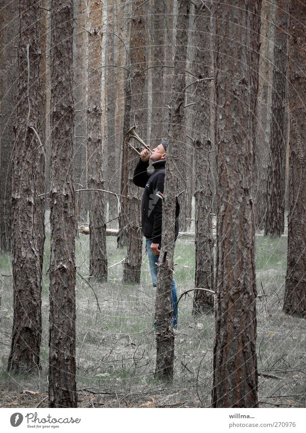 A man stands in the middle of the forest and blows a trumpet Man Adults Human being Music Musician Trumpeter bugle clairon Vociferous Blow Wind instrument