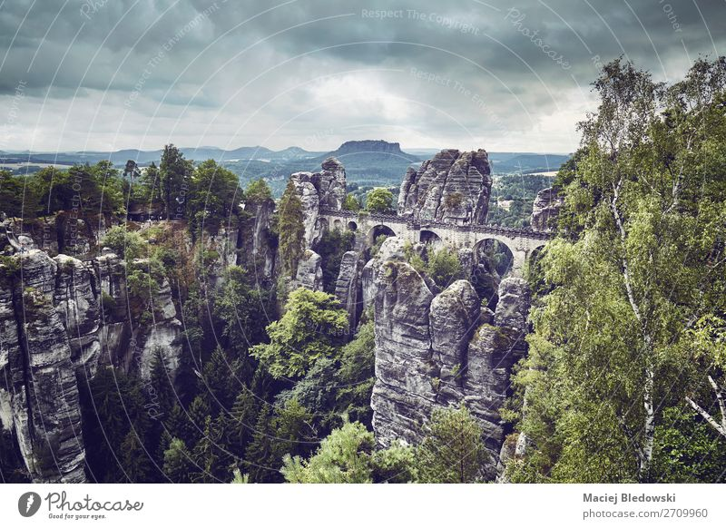 Vintage toned picture of Bastei Bridge, Germany. Vacation & Travel Tourism Trip Adventure Sightseeing Mountain Hiking Nature Landscape Tree Park Forest Rock