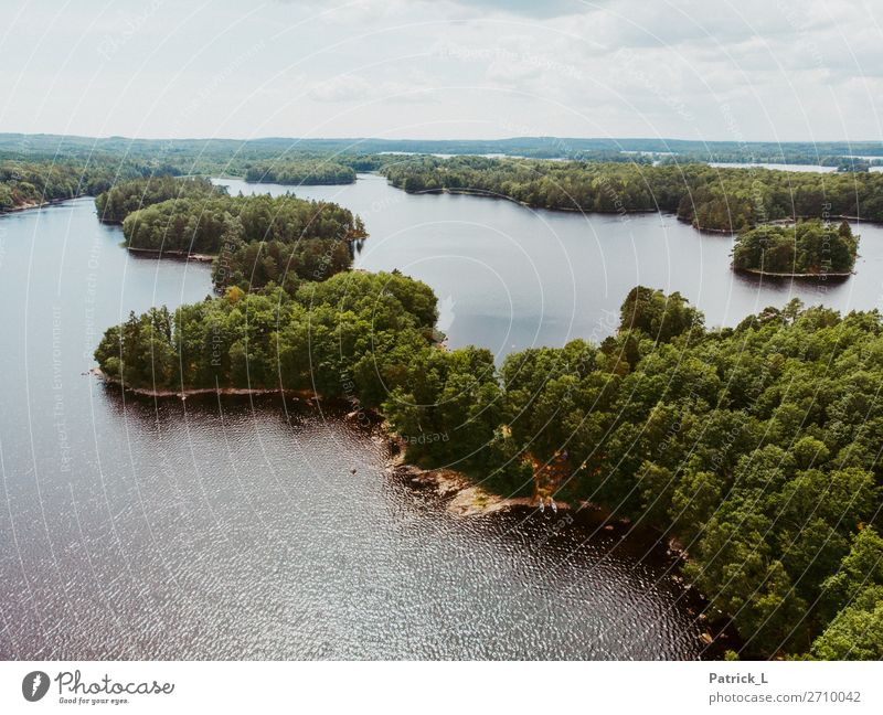 water migration Environment Nature Landscape Elements Water Summer Tree Forest Lakeside Island Sweden Deserted Canoeing Canoe trip Discover Free Large Infinity