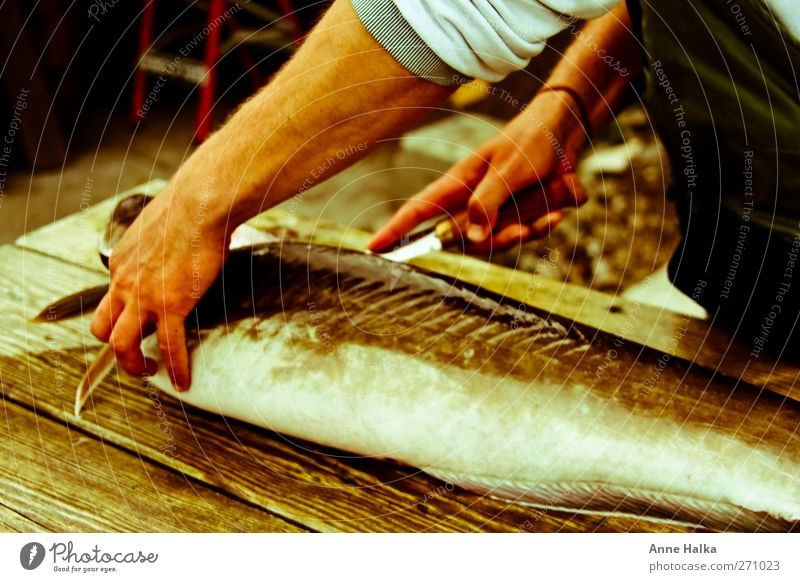 Lengfish filleting in Alt Arm Hand 1 Human being Dead animal Fish Catch To feed Ocean Fishing (Angle) Bait Pork tenderloin Knives Water wings Cooking Roast