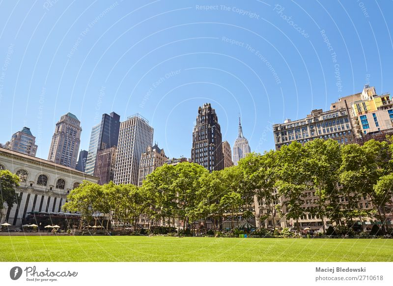 New York skyline seen from the Bryant Park, USA. Sky Vacation & Travel Nature Summer Blue Green Tree House (Residential Structure) Architecture Grass Building