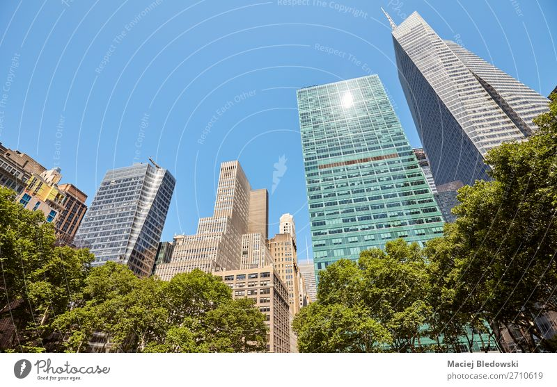 New York skyline seen from the Bryant Park, USA. Vacation & Travel Summer Living or residing Flat (apartment) Office Cloudless sky Tree Skyline High-rise