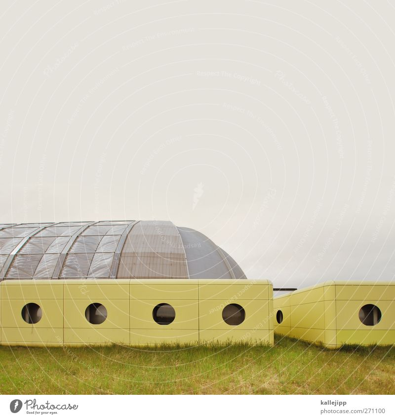 perfect plastic world Swimming pool Building Architecture Facade Window Round Yellow Hall Futurism Spacecraft tropical islands Greenhouse Brandenburg Artificial