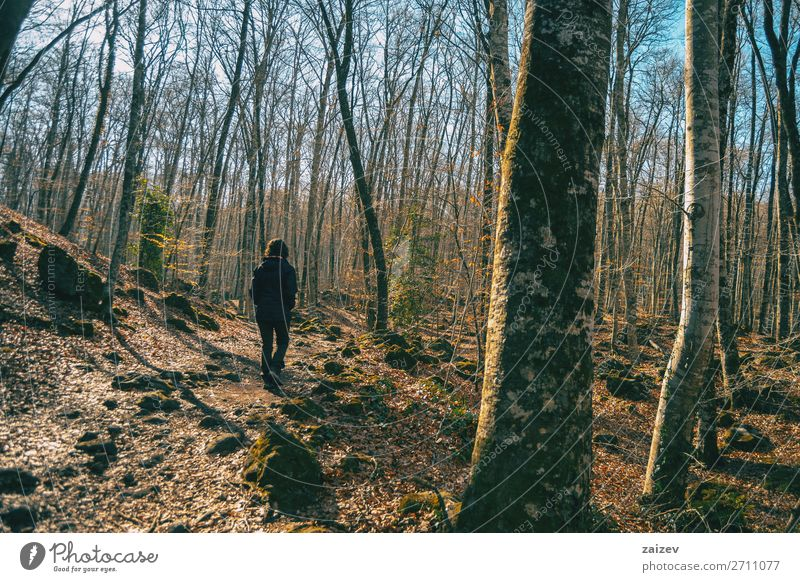 A girl walking in an autumnal landscape through a forest Relaxation Meditation Vacation & Travel Tourism Adventure Hiking Human being Woman Adults Nature