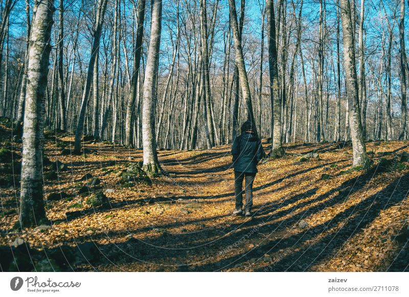 A girl hiking through the shadows of the trees in an autumnal forest Beautiful Relaxation Meditation Vacation & Travel Tourism Trip Adventure Hiking Human being