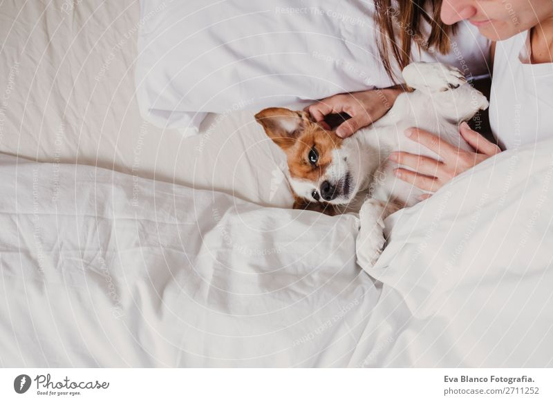 cute small dog lying on bed with her human. Pets indoors. Relax Woman Human being Dog White House (Residential Structure) Relaxation Animal Joy Face Adults Love