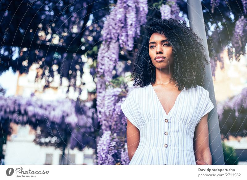 Young black woman surrounded by flowers Woman Blossom Spring Lilac Portrait photograph multiethnic Black African Mixed race ethnicity Considerate Looking away