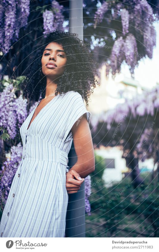 Young black woman surrounded by flowers Woman Blossom Spring Lilac Portrait photograph multiethnic Black African Mixed race ethnicity Considerate