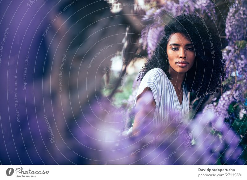 Thoughtful young black woman sitting surrounded by flowers Woman Blossom Spring Lilac Portrait photograph multiethnic Black African Mixed race ethnicity