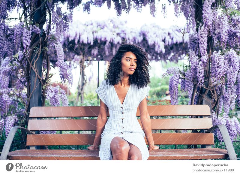 Young black woman sitting surrounded by flowers Woman Blossom Spring Lilac Portrait photograph multiethnic Black African Mixed race ethnicity Smiling