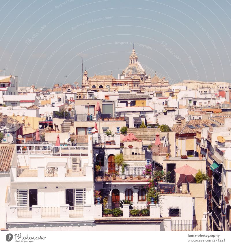 Seville [XLV] Andalucia Spain Town Capital city Downtown Old town Overpopulated House (Residential Structure) Building Architecture Balcony Terrace Roof White