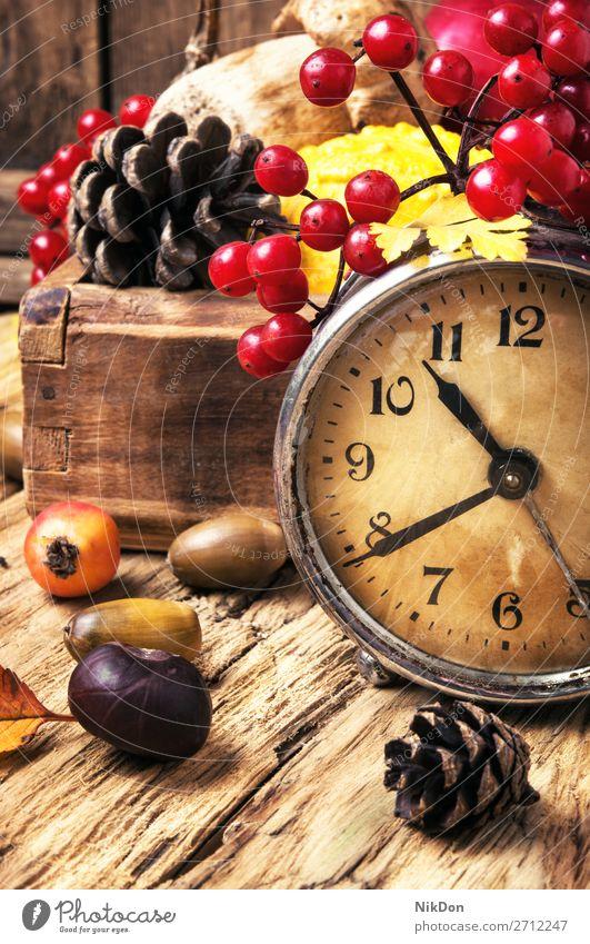alarm clock and autumn symbols time fall leaf old concept retro season vintage watch cone acorn viburnum orange yellow hour foliage natural wooden color