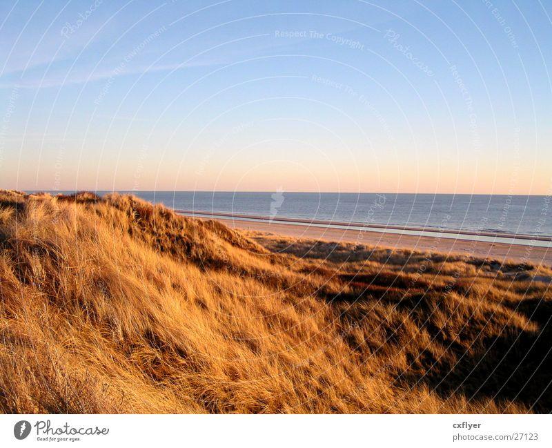 Water Sky Ocean Blue Beach Grass Beach dune