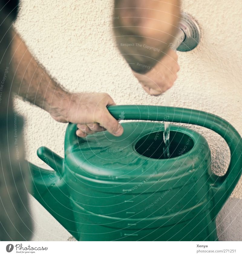 pot of water Masculine Arm 1 Human being Garden Watering can Green Gardening Cast Section of image Exterior shot Day Shallow depth of field