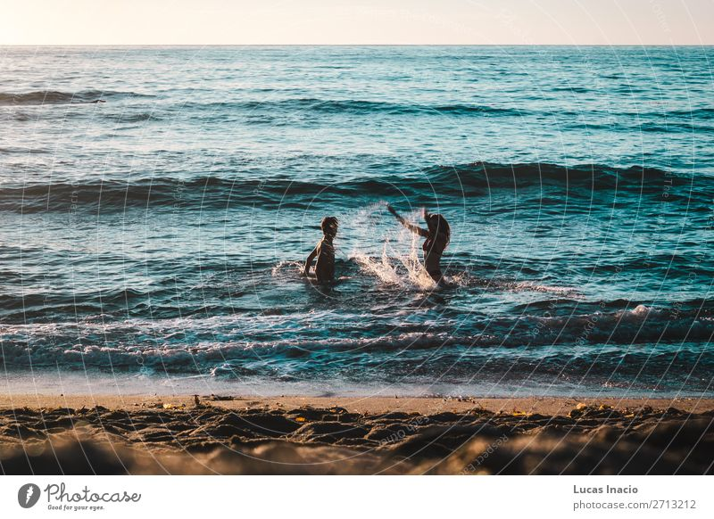Couple Playing on the Beach at Sunset Cliffs, San Diego Vacation & Travel Tourism Trip Summer Summer vacation Ocean Waves Human being Masculine Feminine