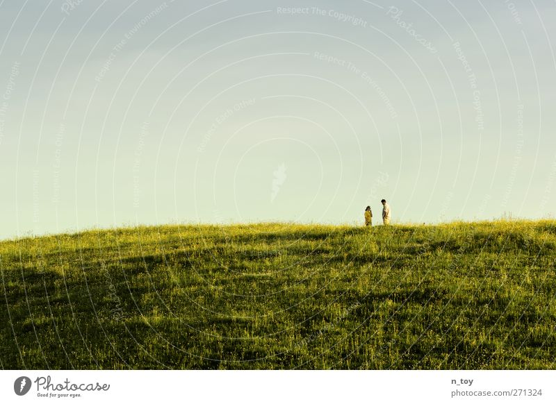 Human being Woman Man Nature Blue Green Sun Summer Adults Environment Landscape Meadow Feminine To talk Happy Sadness