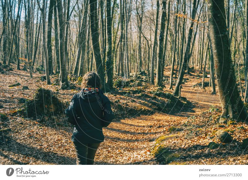 A young woman from behind walking in an autumn forest. Beautiful Relaxation Meditation Vacation & Travel Tourism Adventure Hiking Human being Woman Adults