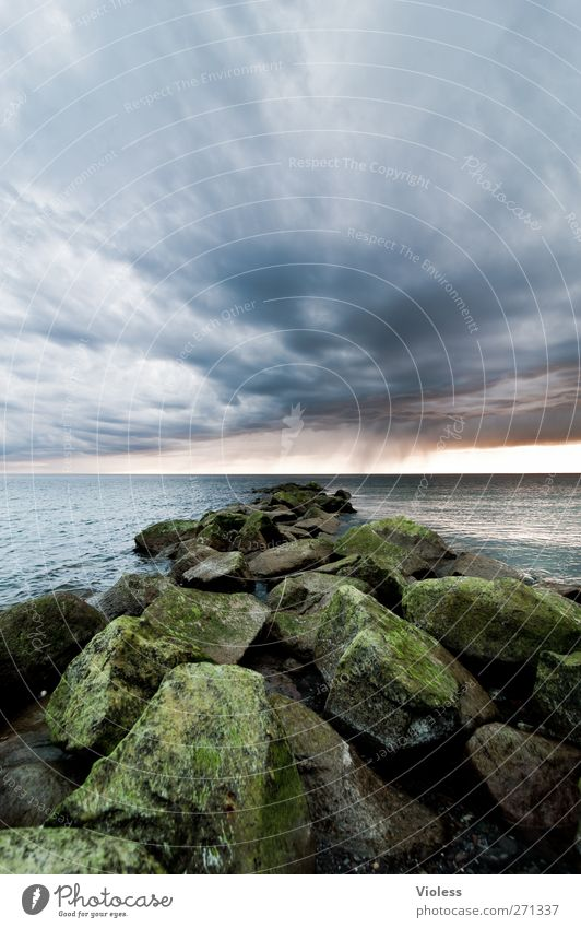 Hiddensee the rock.... Nature Landscape Sky Clouds Storm clouds Weather Coast Baltic Sea Ocean Threat Stone Colour photo Exterior shot Wide angle