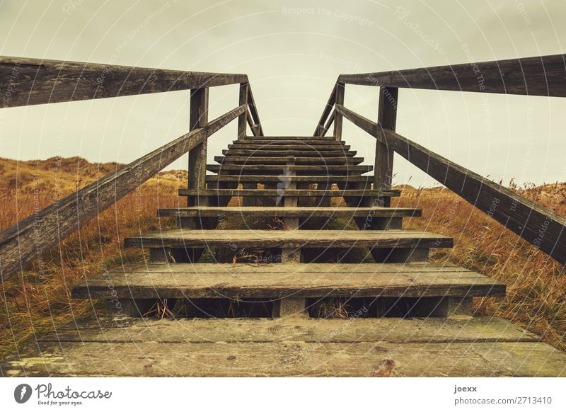Wooden stairs with railing to the path over the dune wooden staircase stagger Sky Clouds ascent Handrail boules upstairs Skyward rise Deserted Stairs Banister