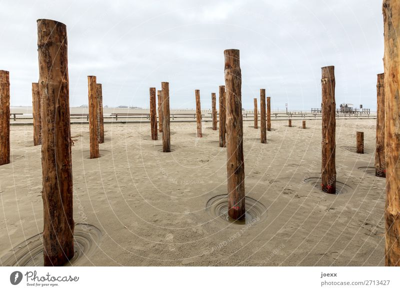 full post Wood Brown Gray Pole Wooden stake St. Peter-Ording Beach Colour photo Subdued colour Deserted Day Deep depth of field
