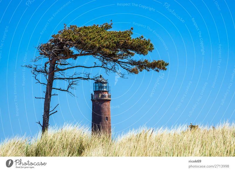 Lighthouse Darßer Ort on the Fischland-Darß Relaxation Vacation & Travel Tourism Nature Landscape Clouds Weather Tree Coast Baltic Sea Architecture