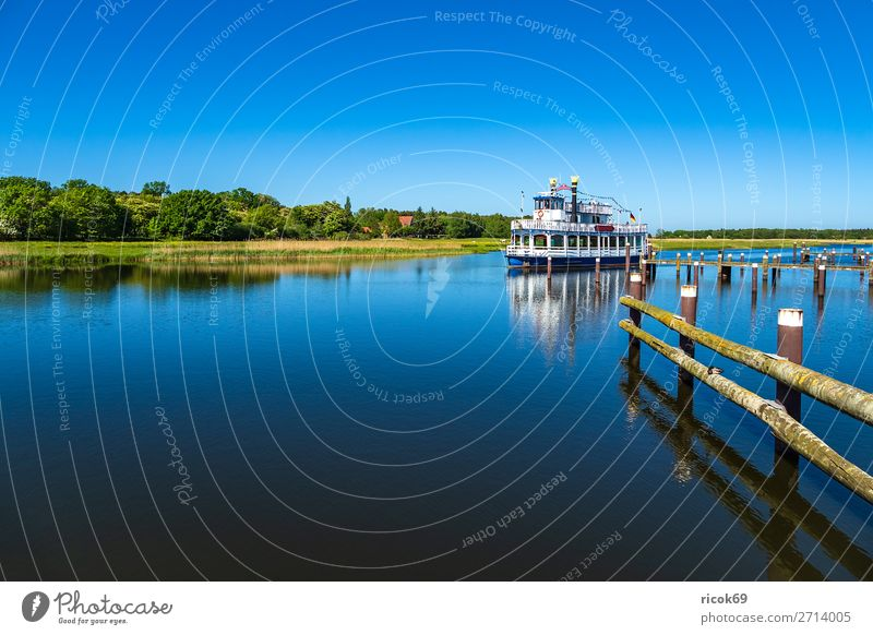 Excursion ship on the Prerow stream in Prerow Relaxation Vacation & Travel Tourism Nature Landscape Water Cloudless sky Weather Tree Forest Harbour Watercraft