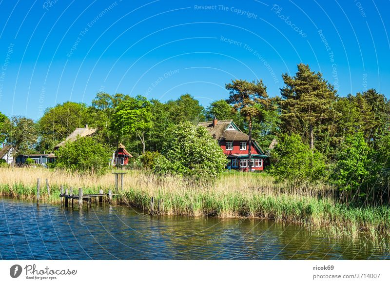Houses on the Prerow stream in Prerow Relaxation Vacation & Travel Tourism House (Residential Structure) Nature Landscape Water Cloudless sky Weather Tree Leaf
