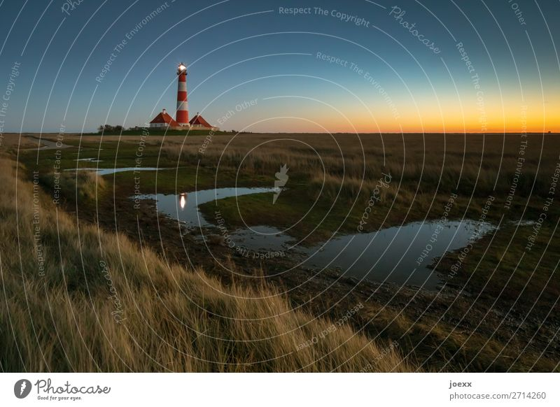 Evening atmosphere lighthouse Westerheversand Lighthouse Sunset Beautiful weather Beacon Tourist Attraction Maritime Tall Old White Red Idyll Multicoloured