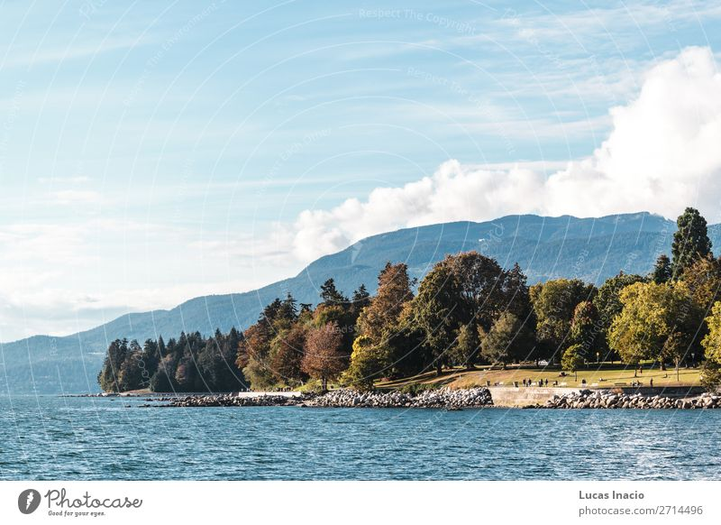 Stanley Park and the sea in Vancouver, Canada Summer Beach Ocean Environment Nature Sand Sky Tree Leaf Rock Coast Skyline Adventure Relaxation Vacation & Travel