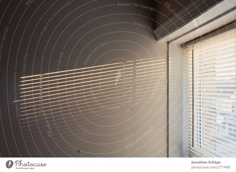 incidence of light Wall (barrier) Wall (building) Esthetic Room Window Venetian blinds Afternoon sun Flat (apartment) Bleak Minimalistic Empty Vacancy