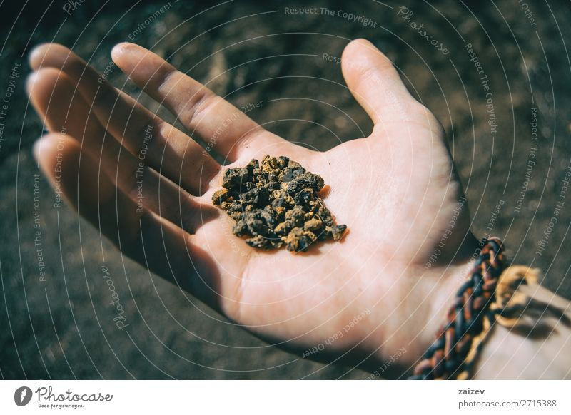 Close-up of some volcanic soil held by a human hand Vacation & Travel Adventure Hiking Human being Hand Fingers Nature Earth Stone Small Natural Brown Black