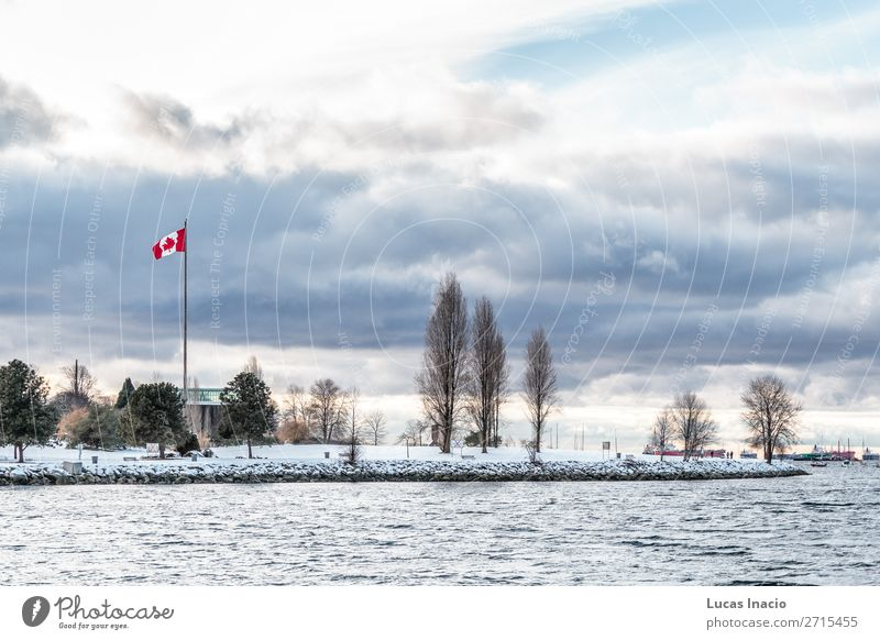 Vancouver beach covered in snow, BC, Canada Beach Ocean Winter Snow Environment Nature Sand Sky Clouds Snowfall Tree Leaf Rock Coast Downtown Skyline Flag