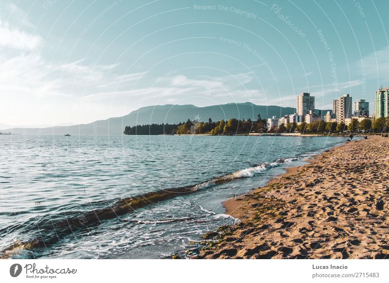 English Bay Beach in Vancouver, BC, Canada Summer Ocean Mountain House (Residential Structure) Environment Nature Sand Tree Flower Leaf Blossom Park Hill Coast