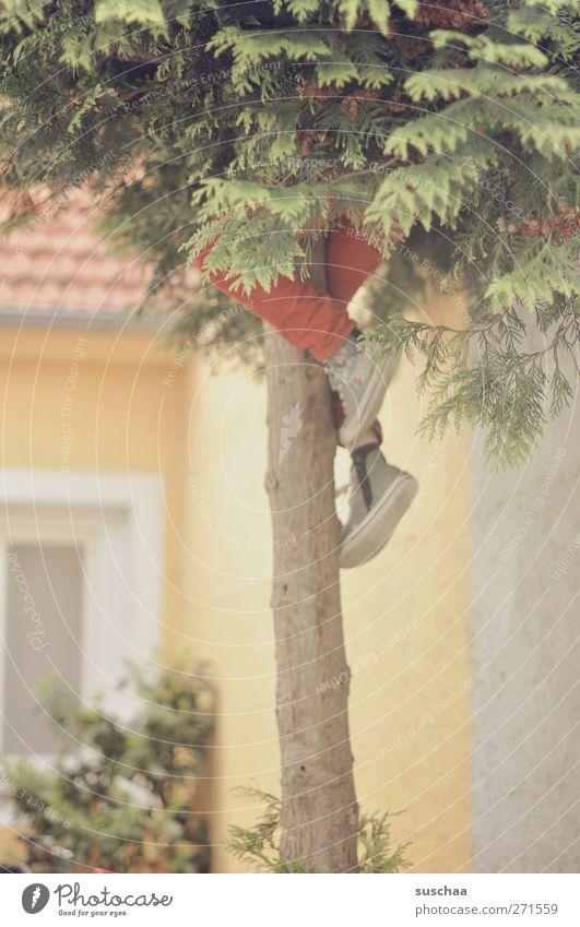Human being Tree Joy Window Building Legs Feet Infancy Facade Concrete