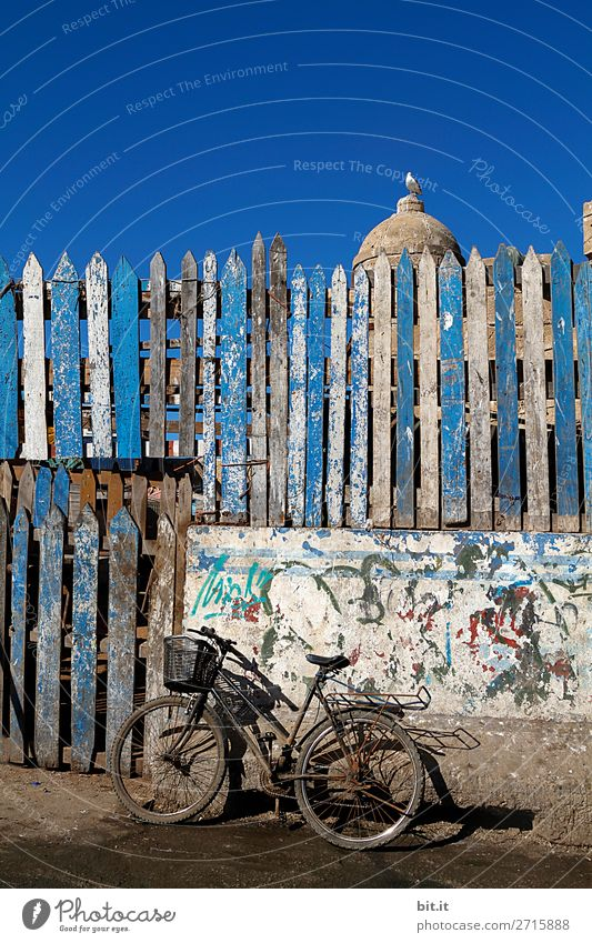 Vacation & Travel Summer Far-off places Religion and faith Tourism Freedom Trip Bicycle Stand Adventure Poverty Cycling tour Fence Wooden board Africa Exotic