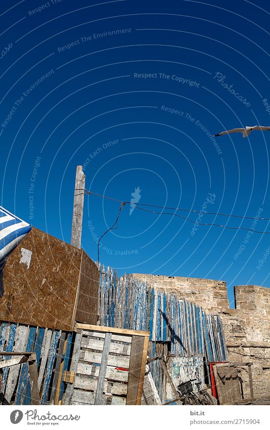 Old wooden wall in the harbour of Essaouira, in Morocco, Africa. Redecorate Craftsperson Craft (trade) Construction site Architecture Sky Wall (barrier)