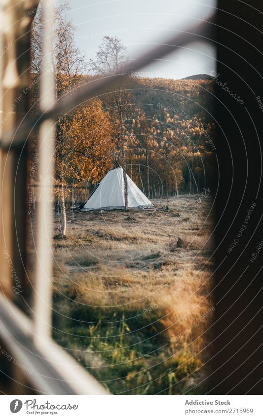 View to tent in forest Tent Forest Autumn Window Action Nature Park Lifestyle Landscape Tourism Vacation & Travel Hiking Adventure Seasons Leisure and hobbies