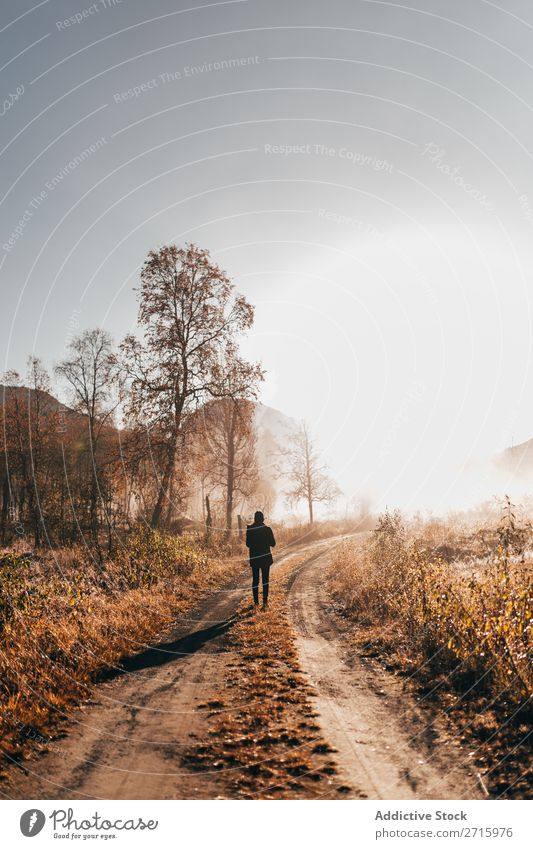 Person walking on road in woods Human being Forest Walking Nature Autumn Street Rural Hiking Leisure and hobbies Vacation & Travel Adventure Park Action
