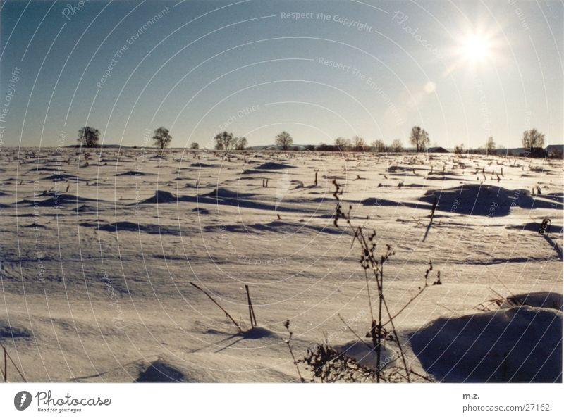 Sun Winter Cold Snow Bright Field Desert