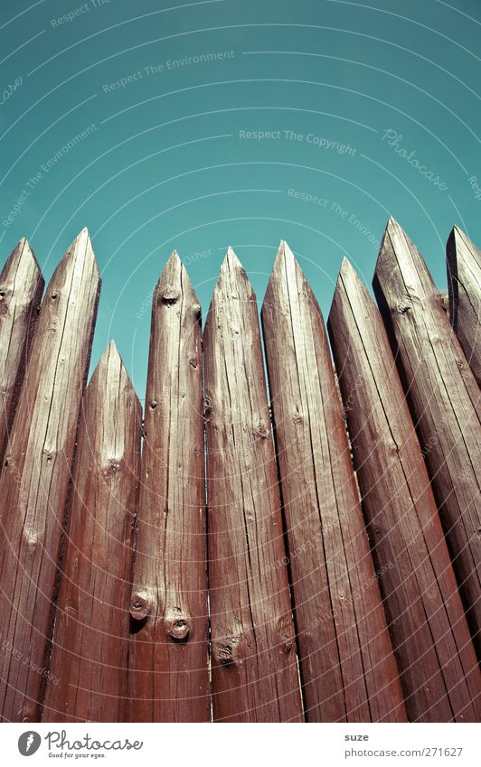 Offensive defence Environment Sky Cloudless sky Wood Aggression Threat Tall Long Point Blue Brown Protection Fence Wooden fence Wooden board Fence post