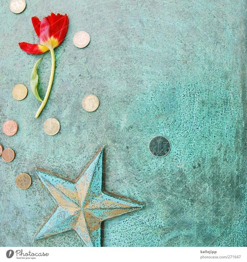 Red Flower Star (Symbol) Money Grief Monument War Russia Sacrifice Russian Donation Communism World War Military cemetery