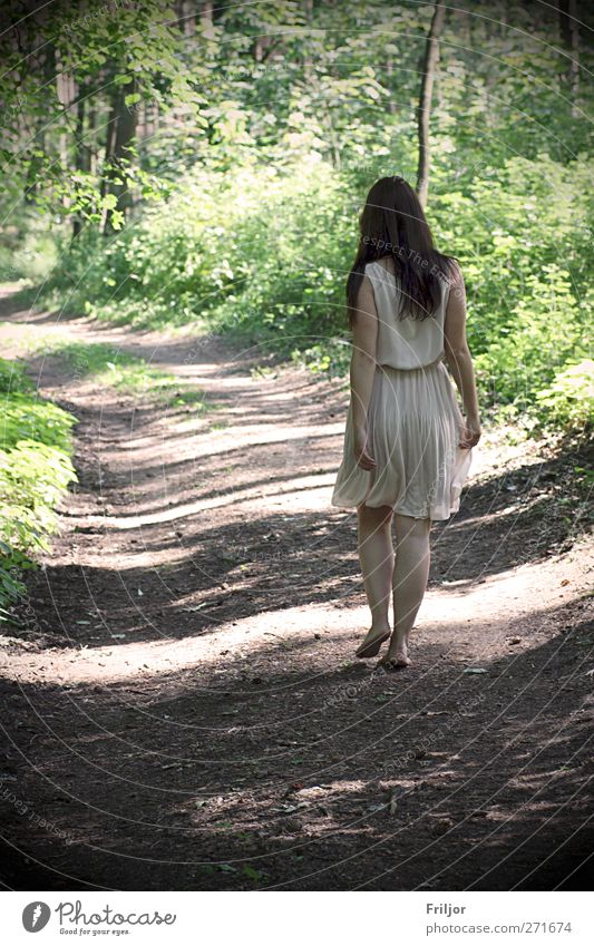 walking Summer vacation Human being Feminine Young woman Youth (Young adults) 1 18 - 30 years Adults Forest Dress Brunette Long-haired Walking Happy Wanderlust
