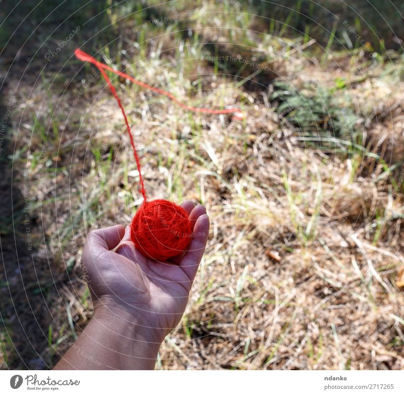 round red wool ball Hand Nature Forest Rotate Throw Bright Red Help Colour Hope Problem solving thread palm Hold Top Wool earth Ground Pull left Lost