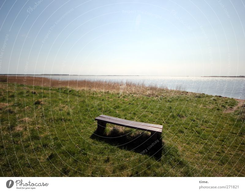 Hiddensee, there's always a place for you. Environment Nature Landscape Sky Horizon Grass Meadow Coast Seating Bench Moody Contentment Trust Secrecy Wisdom