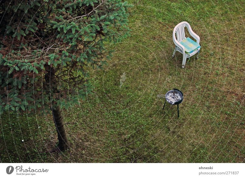 GRILLFEST Fir tree Garden Meadow Barbecue (apparatus) Chair Garden chair Cold Loneliness Boredom Deserted Colour photo Subdued colour Exterior shot