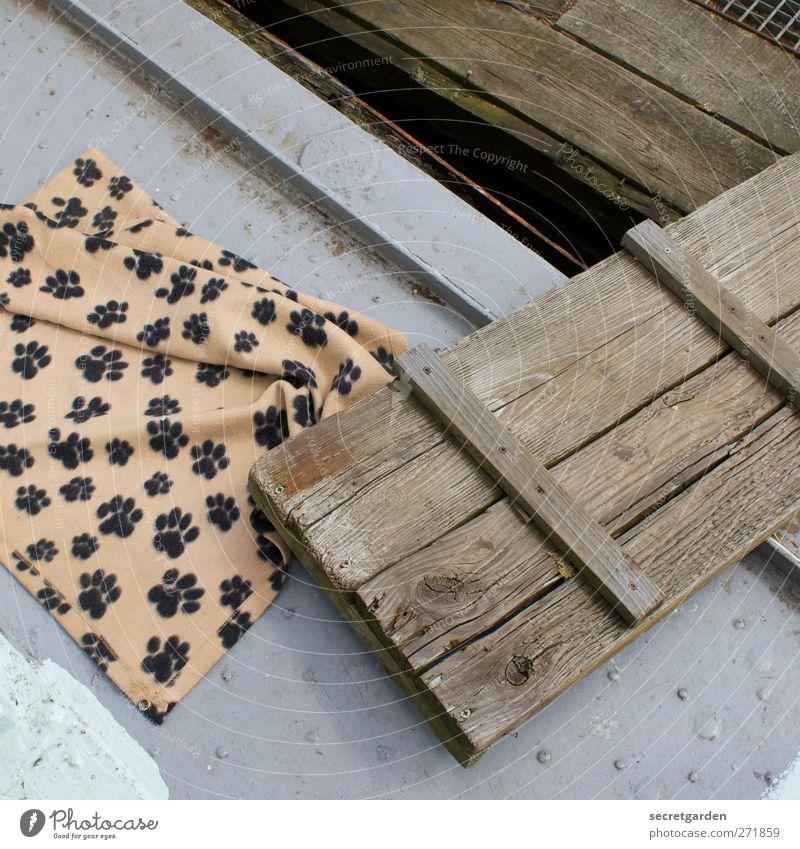 favourite spot on the jetty. Wood Steel Brown Gray dog blanket Paw Footbridge Plank Blanket Folded Tilt Cloth Cloth pattern Living or residing Hard Watercraft