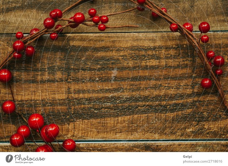 Christmas branch with red berries Fruit Winter Decoration Feasts & Celebrations Christmas & Advent Nature Plant Tree Leaf Wood New Many Green Red White Colour